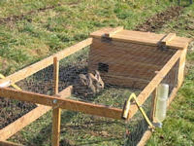 Cabane a lapin mobile