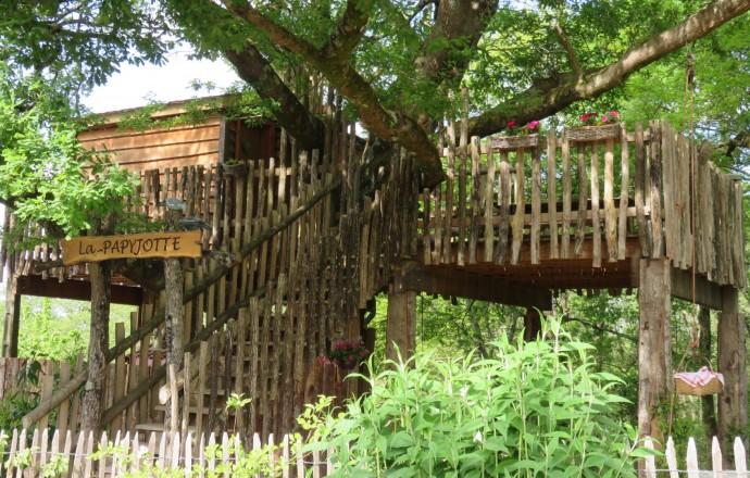 Cabane arbre reunion