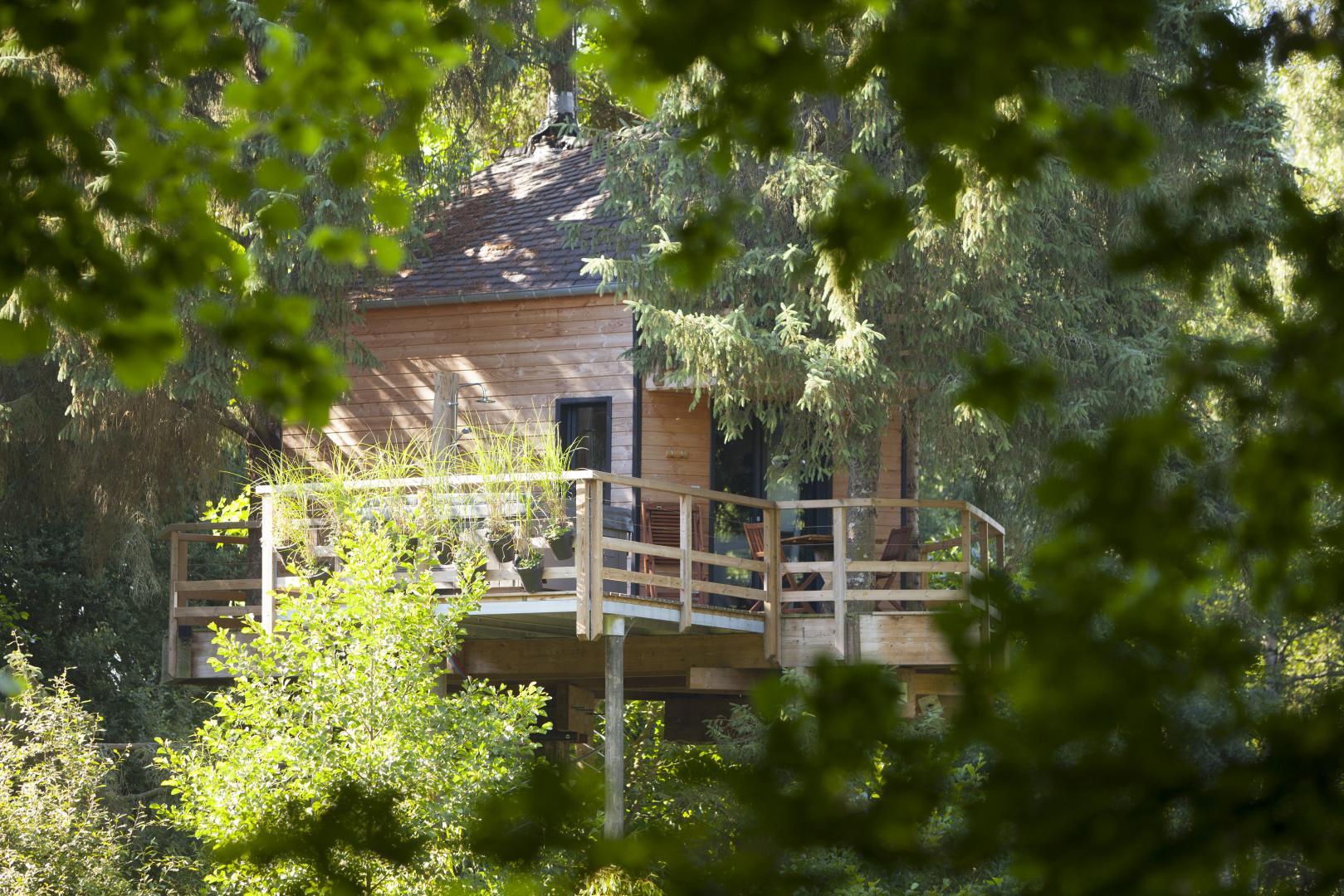 Cabane arbre ille et vilaine