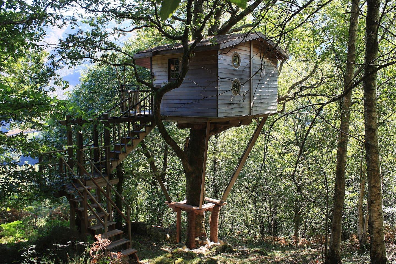Cabane arbre itxassou