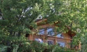 Cabane arbre loiret