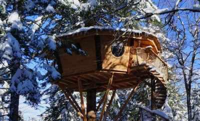 Cabane dans les bois guyonvelle