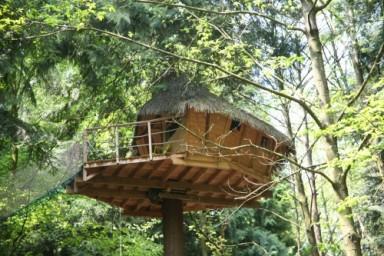 Cabane arbre somme