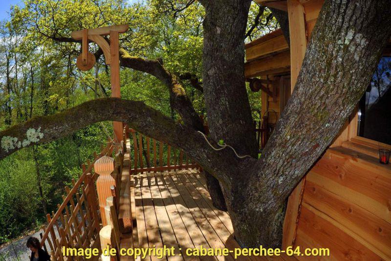 Cabane arbre pays basque