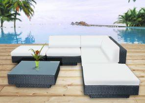 Jardin piscine et Cabane -