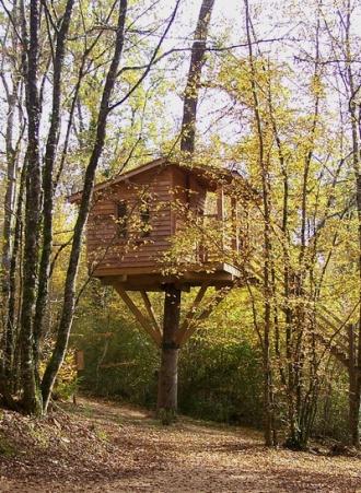 Cabane arbre permis de construire