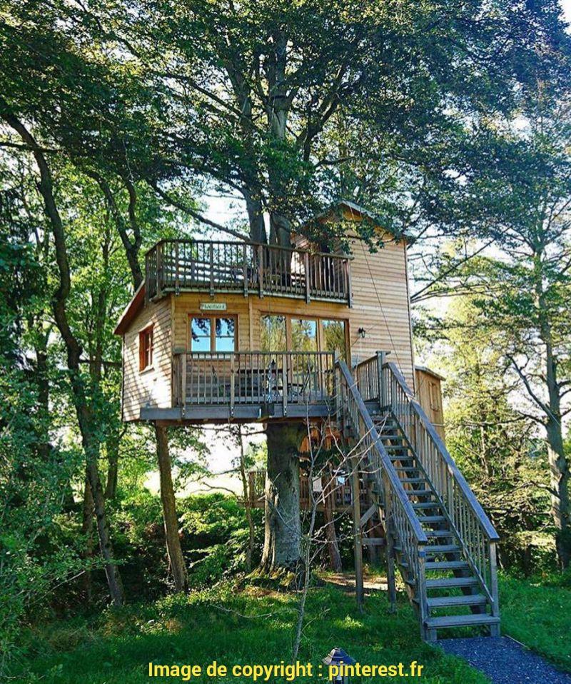 Cabane arbre haute garonne