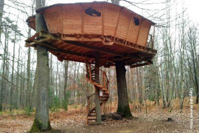 cabane en bois dans les arbres plan jardin piscine et cabane. Black Bedroom Furniture Sets. Home Design Ideas