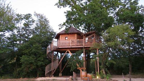 Cabane perchée dans les arbres en gironde