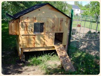 Comment faire une cabane a poule jardin piscine et cabane - Comment faire une piscine pas cher ...