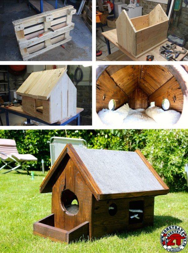 cabane chat polystyrene jardin piscine et cabane. Black Bedroom Furniture Sets. Home Design Ideas