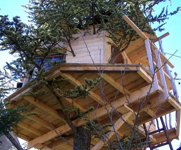 Cabane arbre fixation