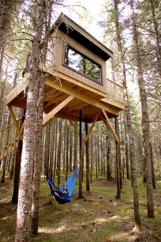 Hebergement cabane arbre quebec