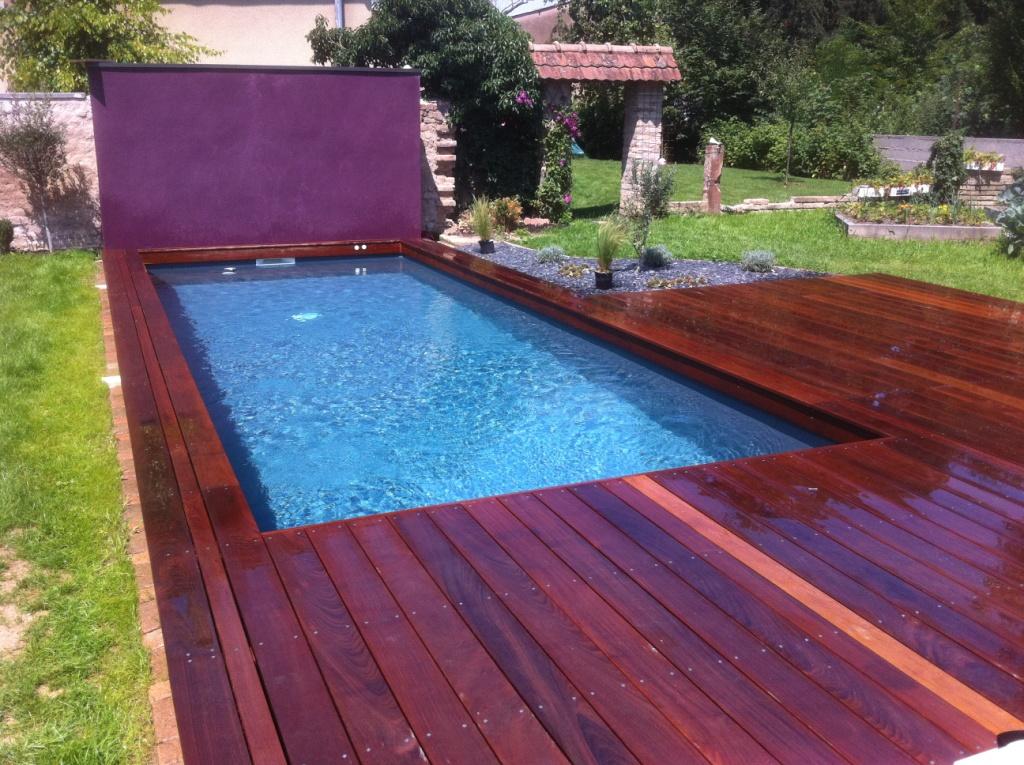Piscine jardin rectangulaire - Jardin piscine et Cabane